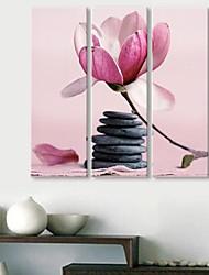 Su tela Arte Le pietre e fiori Set di 3