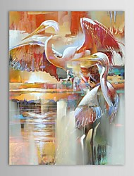 Hand Painted Oil Painting Animal Two Swans in The Lake Paddle with Stretched Frame