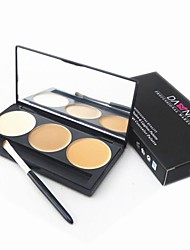 3 Color 5in1 Professional Concealer/Foundation/Blusher/Bronzer Makeup Cosmetic Palette with Mirror&Brush Set
