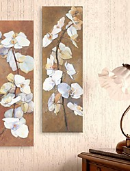 Stretched Canvas Art Oil Painting Style Flower Branches  Set of 2