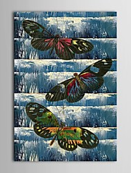 Hand Painted Oil Painting Animal  Wet Wings of a Butterfly with Stretched Frame