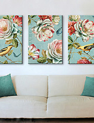 Stretched Canvas Print Vintage Animal Birds and Floral Set of 3 1301-0231