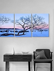 Personalized Canvas Print Stretched Canvas Art Snow Scene  35x50cm  50x70cm  Framed Canvas Painting  Set of 3