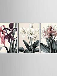 étiré toile art fleur décorative ensemble de trois de peinture