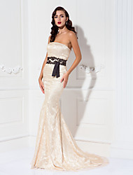 Formal Evening/Military Ball Dress - Champagne Plus Sizes Trumpet/Mermaid Strapless Sweep/Brush Train Lace