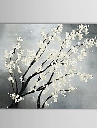 Hand Painted Oil Painting Floral White Blooming Flower Canvas Painting with Stretched Frame