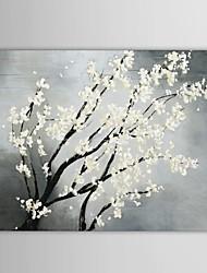iarts®hand роспись маслом цветочный белый цветущих холстины с протянутой кадр