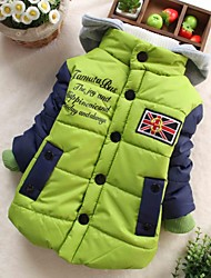 Boy's Fashion All-Matching with Hooded Coat