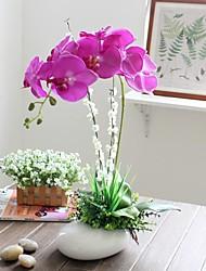 22 h «style noble des ménages simulation orchidée papillon avec vase en céramique ovale