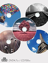 Personalized CD-R/DVD-R Recordable Disc Scenery Pattern Different Designs Magic Gift (Set of 5)