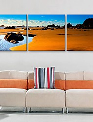 Personalized E-HOME® Canvas Print The Beach Scenery 30x30cm 40x40cm 60x60cm Framed Canvas Painting Set of 3