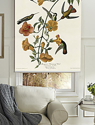 Mangrove Humming Bird Roller Shade