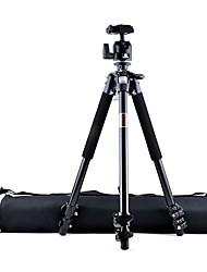 Sieg 3010B tragbare Aluminium Kamera-Stativ mit Kugelkopf und tragen Rucksäcke
