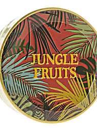 Skin Food MAKE UP - FACE Jungle Fruits Vita Whitening Swirl Pact SPF20 PA++ (#1)