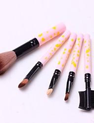 Hot Sale Professional Makeup Brush Set with 5Pcs Brushes