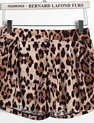 Women's Animal Print Shorts Pants , Casual