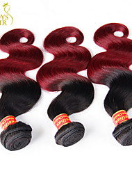 "3Pcs Lot 14""-28"" Ombre Brazilian Virgin Human Hair Extensions/Weaves Body Wave 2 Two Tone Black Burgundy Wine Red 1B/99J"