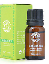 Xiyaotang®Loose Weight Essential Oil(1 bottle)