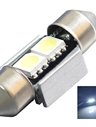 12V 7000-8000K 31MM -5050-2SMD Canbus Lincense Plate And Tail Box Lighting LED Festoon Light for Car