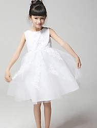 Flower Girl Dress Hemline/Train Fabric Silhouette Sleeve Length Dress