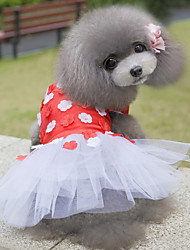 Lovable Design Love for Wintersweet Dress in Summer For Pets Dogs