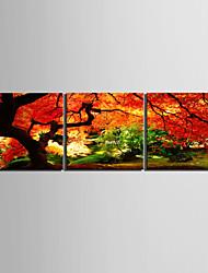 e-FOYER toile tendue art paysage aller profondément dans une forêt décoratif ensemble de trois de peinture