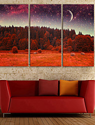 E-HOME® Stretched LED Canvas Print Art Forest And Sky LED Flashing Optical Fiber Print Set of 3