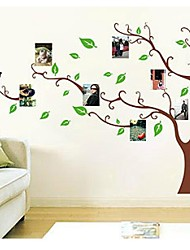 Photo Tree Fram Family Memory Tree Wall Decal Zooyoo803 Decorative Removable Pvc Wall Sticker