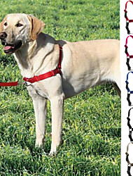 Dog Harness / Leash / Slip Lead Adjustable/Retractable Red / Black / Blue / Gray / Rose Nylon / Plastic / Stainless Steel
