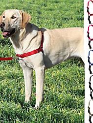 Cães Arreios / Trelas / Coleira Com Deslize Retratável Vermelho / Preto / Azul / Cinzento / Rosa Náilon / Plástico / Aço Inoxidável