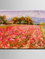 Oil Painting Pastoral Scenery Flower Hand Painted Canvas with Stretched Framed