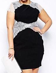 Women's Fashion Contrast Eyelash Lace Black Plus Dress