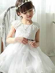 Girl's Swing Mesh Tutu Princess Party Dresses