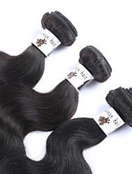 "3Pcs/Lot+8""-30""+Malaysian (Italian)Human Virgin Hair+ color(natural black)+Body wave"