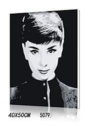 peinture à l'huile numérique bricolage en bois massif avec la peinture de plaisir en famille de cadre tout seul Audrey Hepburn 5079