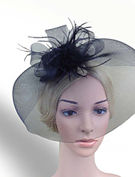 Women Feather/Net Black Vintage Hats/Birdcage Veils With Wedding/Party Headpiece