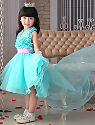 Flower Girl Dress - Princesse Traîne mi-longue Sans manches