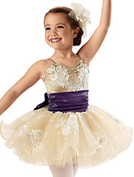 Children Dance Dancewear Children Girls Dance Dresses