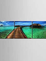 Stretched Canvas Art Coast House   Decorative Painting Set of 3