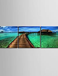arte de la lona estirada casa costa pintura decorativa conjunto de 3
