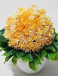 les plantes dans le vase, les fleurs lumineuses