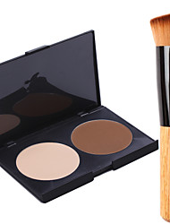 2 Powder Wet Powder Concealer / Natural Face