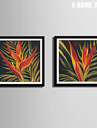 E-HOME® Framed Canvas Art, A Plant Canvas Print Set of 2
