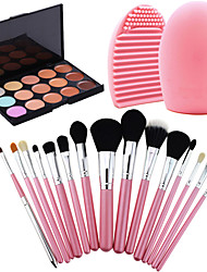 15 Concealer Makeup Brushes Dry Face Concealer China