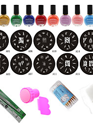 Fashion Nail Art Stamping Manicure Tools (10PCS Nail Plates + 10 Colors Printing Oil +Stamper + Scraper)