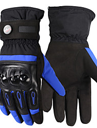 PRO-BIKER Motorcycle Skiing Gloves Windproof Waterproof Full Finger Gloves Outdoor Sports