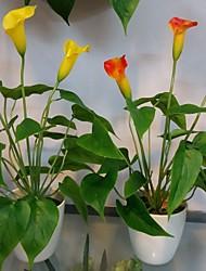 Plástico Lírios Flores artificiais