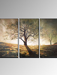 Pintados à mão Paisagem Modern 3 Painéis Pintura a Óleo For Decoração para casa