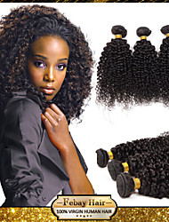 Febay Hair Vietnamese Virgin Hair Kinky Curly 12 14 16 18 20 22 24 26 28 30 Inch 1pcs/lot 100g/pcs