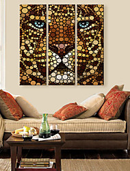 Stretched Canvas Art The Color Of The Lion Face Decorative Painting  Set of 3